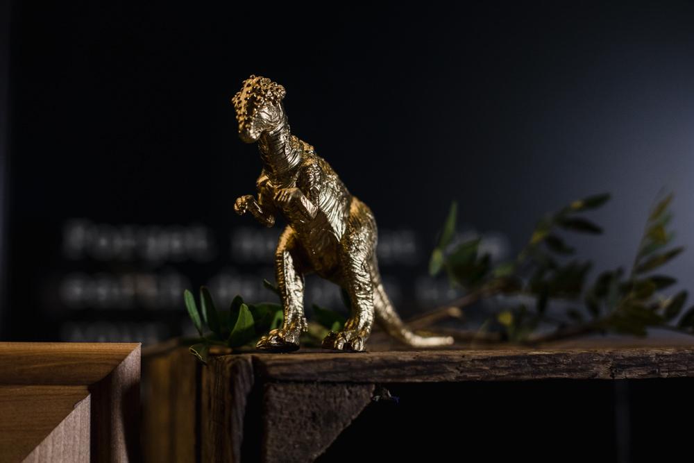 Gold Dinosaur Manchester Museum Wedding Chris Barber Photography