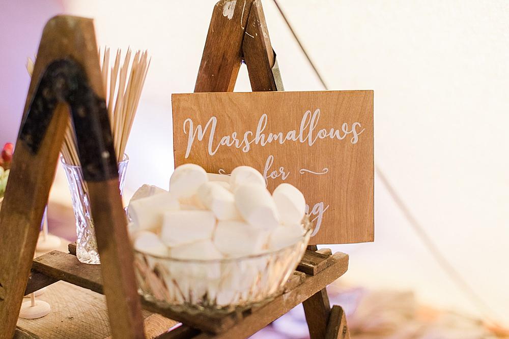 Marshmallows Toasting Smores Chiltern Open Air Museum Wedding Terri & Lori Fine Art Photography