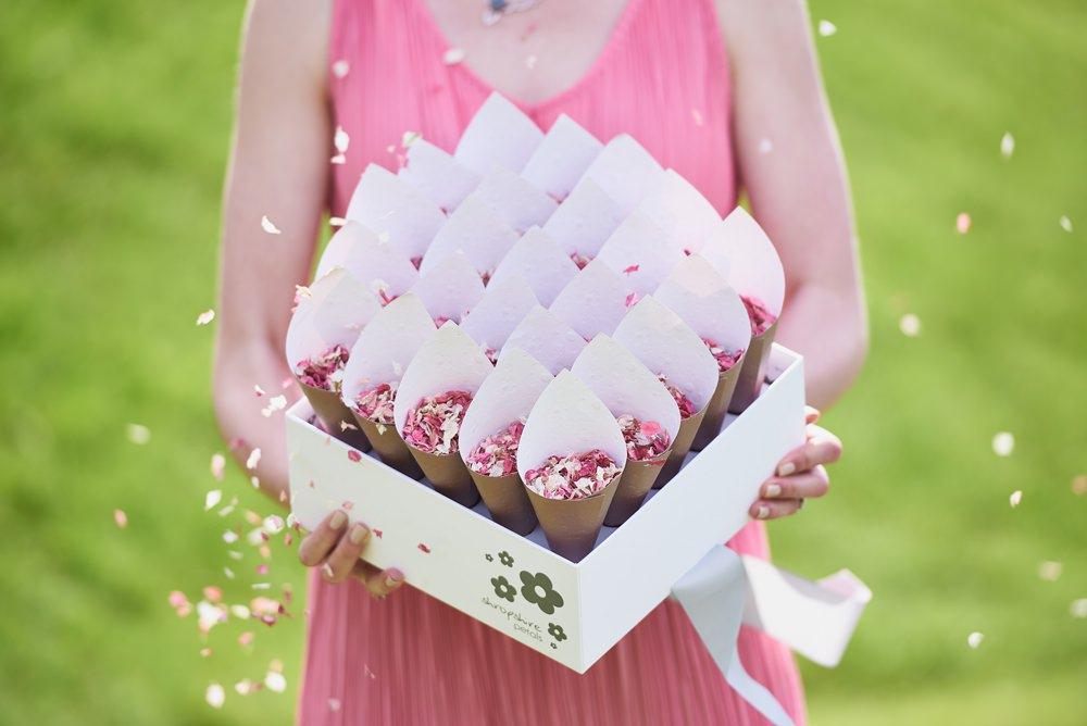 Shropshire Petals - Shropshire Box with Blush confetti and Rose Gold Cones