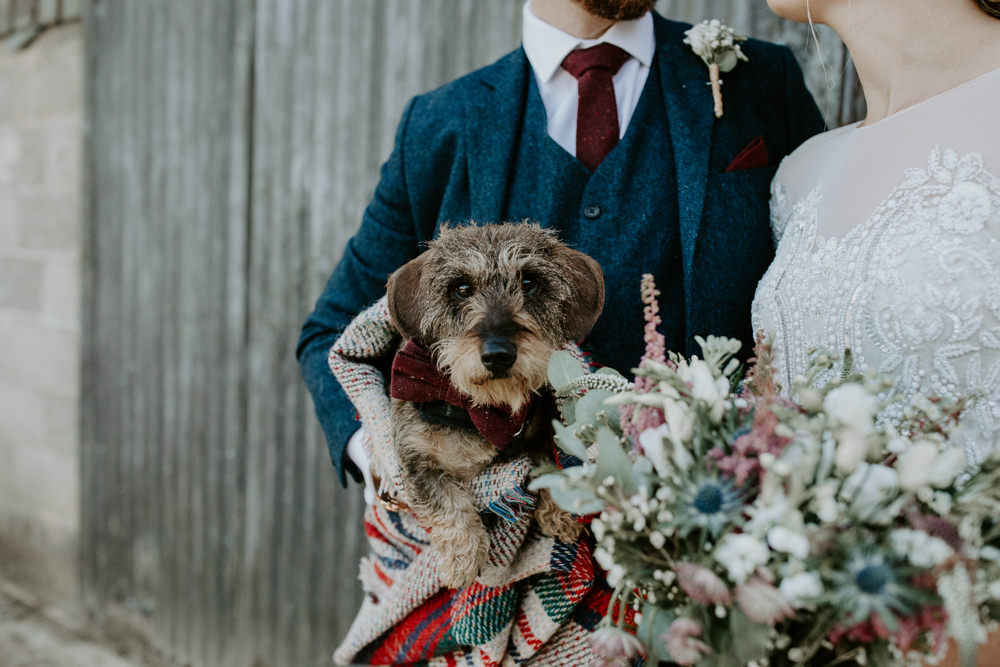 Dog Pet Barn Upcote Wedding Siobhan Beales Photography