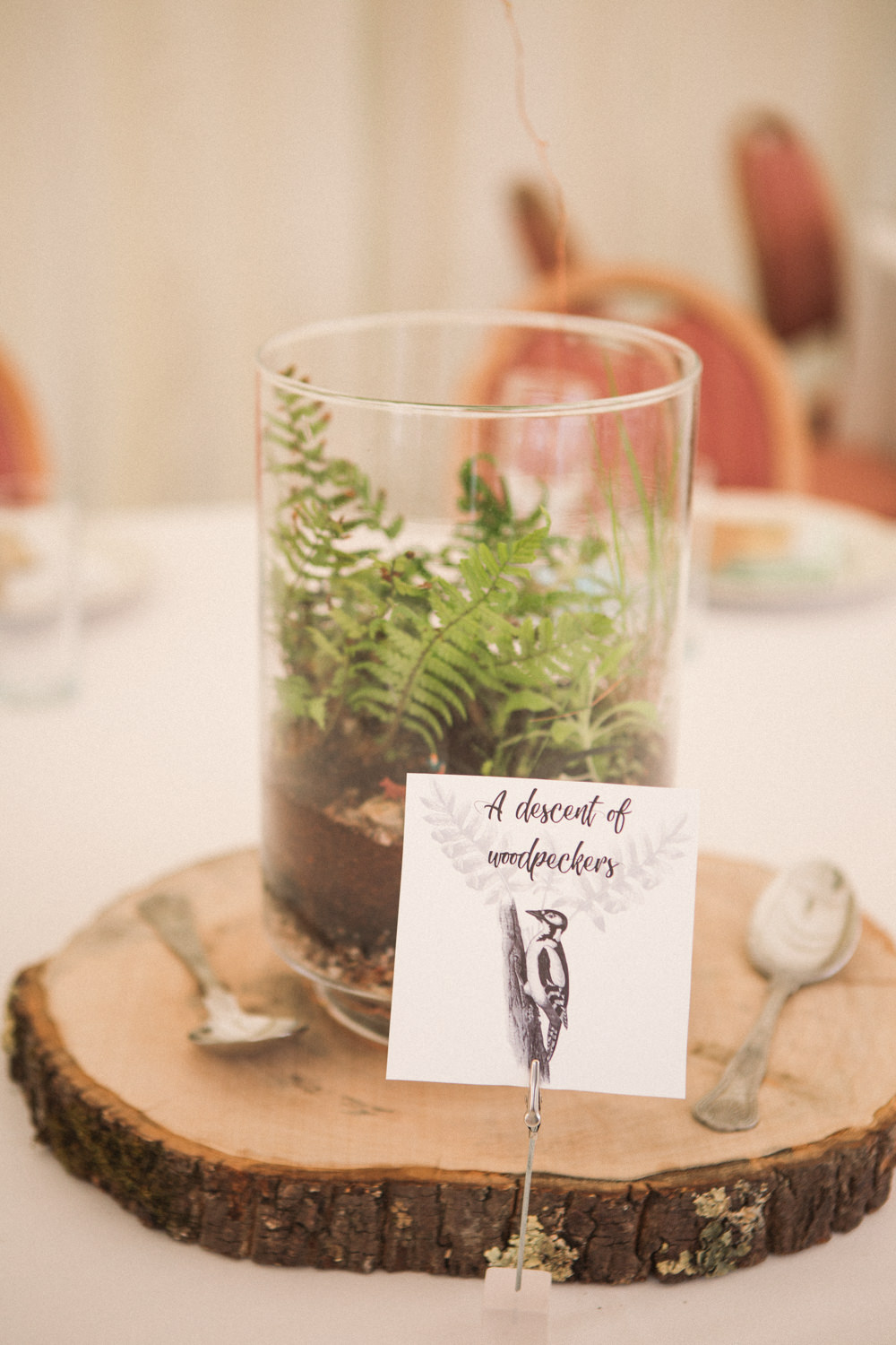 Table Centre Terrarium Wood Slice Middle Coombe Farm Wedding Emma Stoner Photo