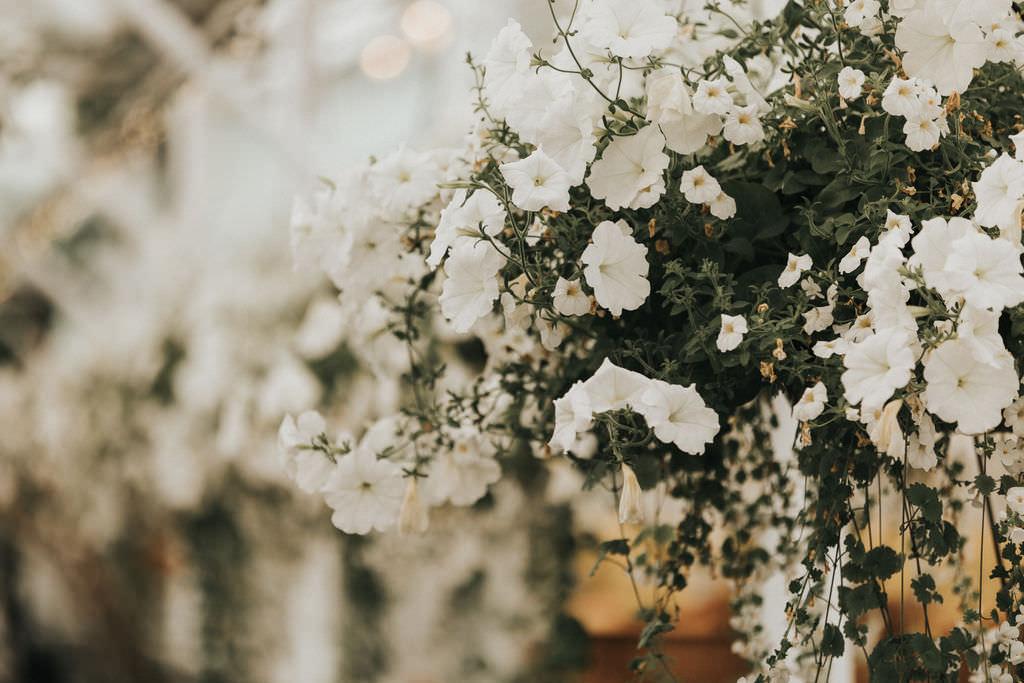 Tall Flower Arrangements White Greenery Greenhouse Garden Washington Wedding Beginning and End Photography