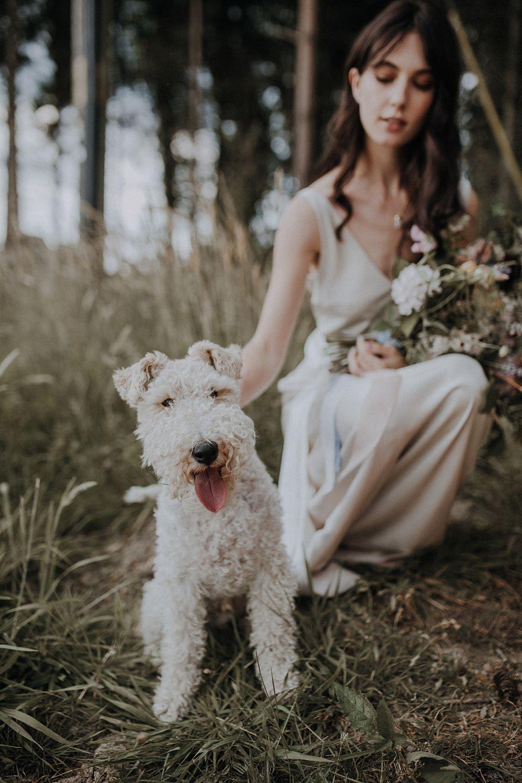 Dog Pet Bohemian Woodland Wedding Ideas Lola Rose Photography