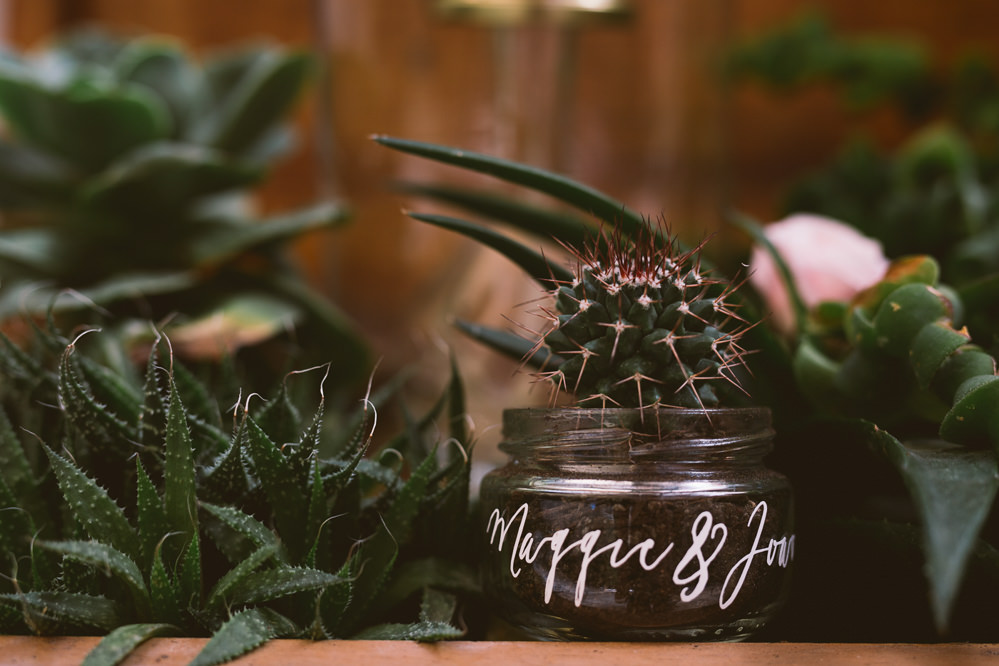 Decor Cacti Cactus Succulents Botanical Dark Green Velvet Pampas Grass Wedding Ideas Bárbara Araújo Photography