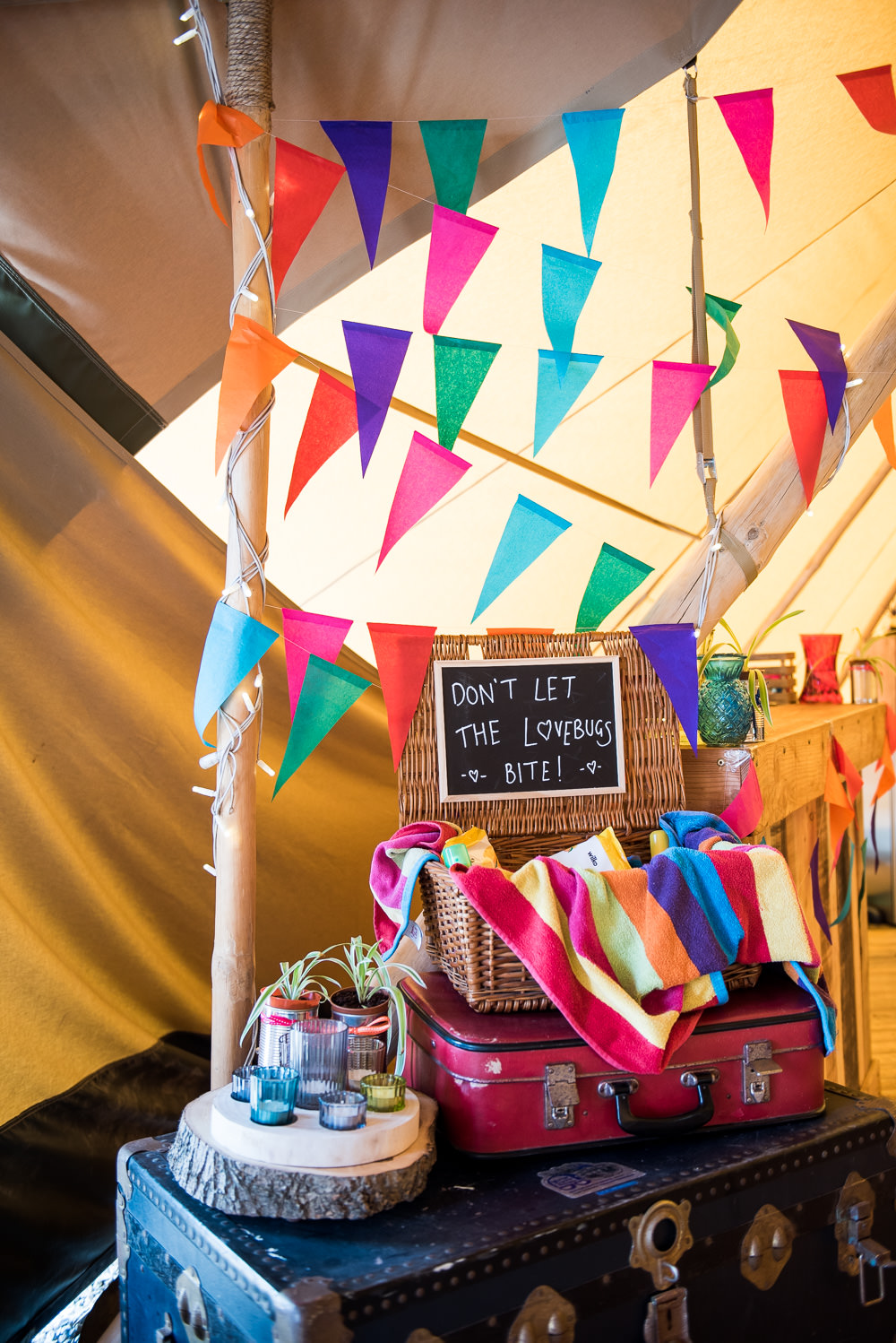 Multicolour Bunting Don't Let The Love Bugs Bite Basket Vintage Trunk Inkersall Grange Farm Wedding Jessica Grace Photography