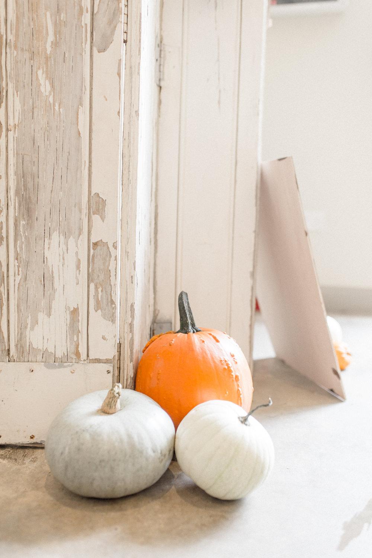 Pumpkins Decor Autumnal Boho Wedding Ivory White Photography