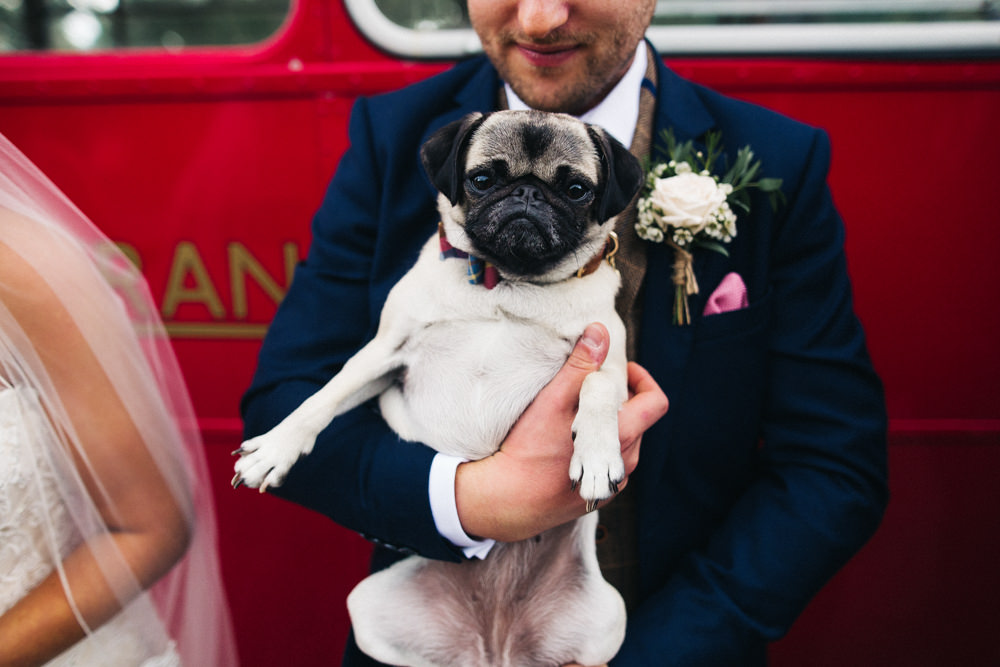 Dog At Wedding Pug Whinstone View Wedding Sally T Photography