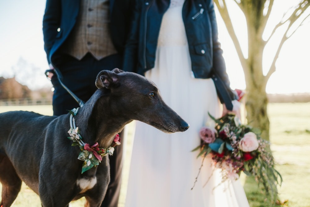 Dog Pet Floral Collar Flower Romantic Wedding Ideas Neon Lighting Kate McCarthy Photography