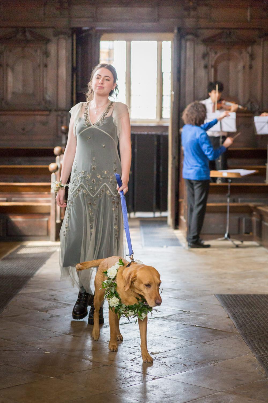 Bridesmaid Dog Bodleian Library Wedding Anita Nicholson Photography