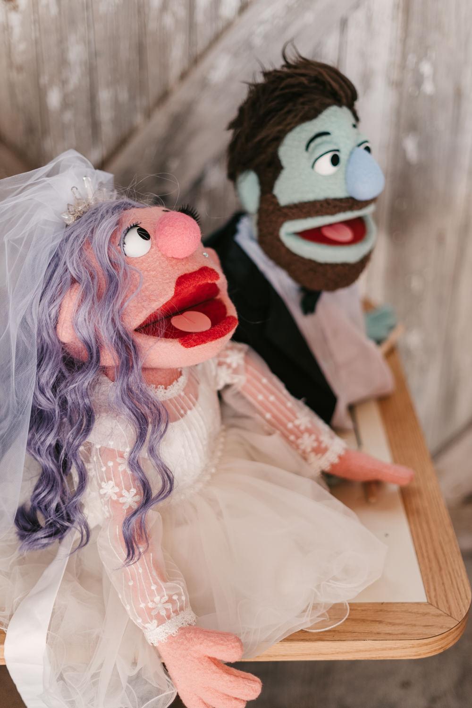 Custom Personalised Muppets Bride Groom Fantasy Nerdy Wedding Eric Lundgren Photography