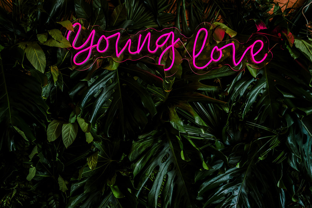 Young Love Neon Sign Greenery Wall Tropical Luxe Wedding Burfly Photography