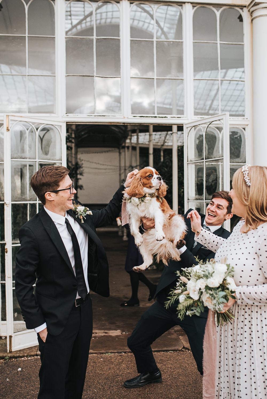 Dog Pet Wollaton Hall Wedding Pear and Bear Photography