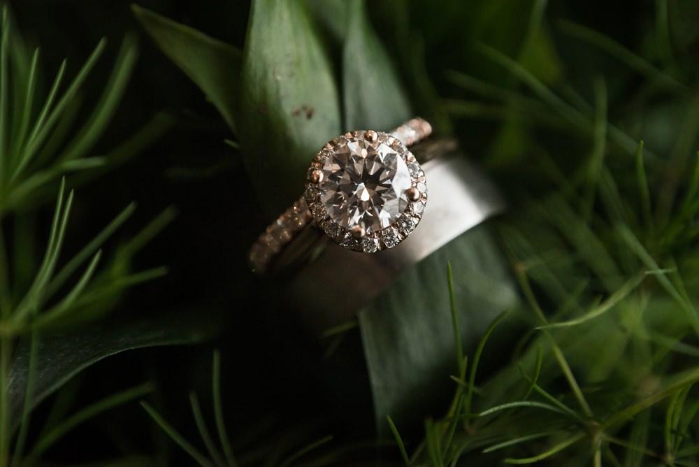 Engagement Ring Diamond Halo Band Greenhouse Michigan Wedding Jean Smith Photography