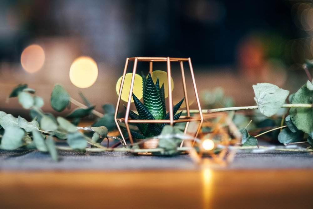 Copper Terrarium Succulent Decor Fairy Lights Greenery Outdoor DIY Wedding Three Flowers Photography