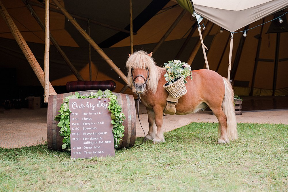 Shetland Pony Seating Plan Table Chart Pet Wedding Ideas Vicky Plum Photography