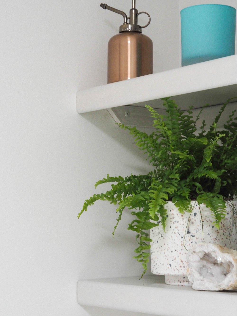 Bathroom Renovation Shelves Shelving Pot Plant Accessories