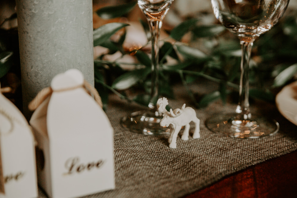 Moose Favour Willingale Village Hall Wedding Photographer Liam Gillan