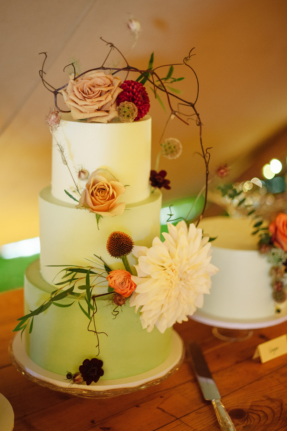 Cake Iced Mint Green Flowers Floral Rock Wedding Cornwall Robin Studios