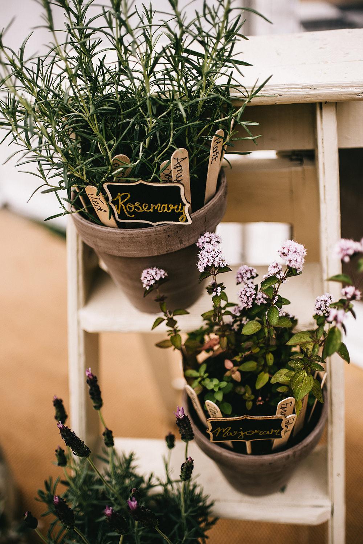 Table Plan Seating Chart Pot Plants Sticks Wooden Ladder Farm Wedding Alex Tenters Photography