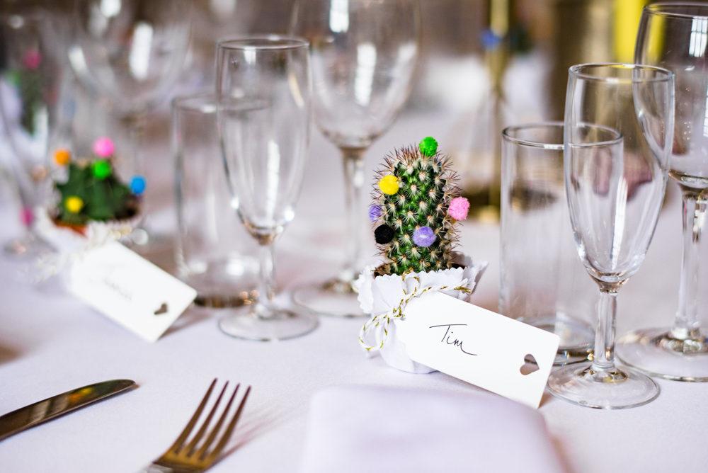 Cactus Favour Anstey Hall Wedding Jonny Barratt Photography