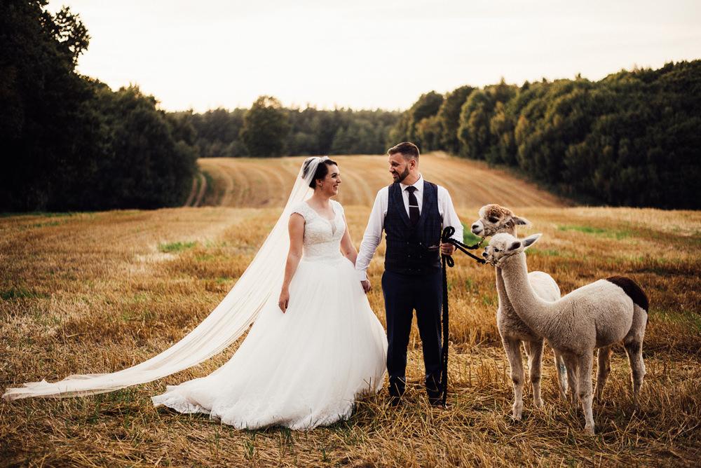 Alpacas Longton Wood Wedding Alex Tenters Photography