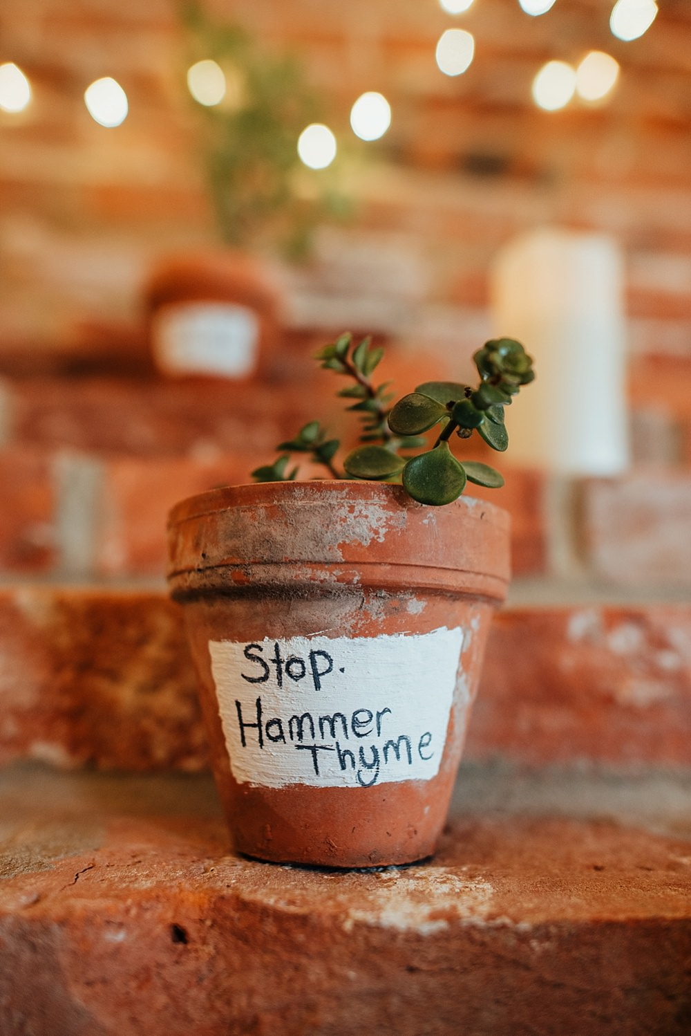 Potted Plant Herb Boho Rustic Wedding This and That Photography
