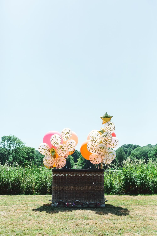 Hot Air Balloon Basket Yew Tree Lakes Wedding Charlotte Hu Photography