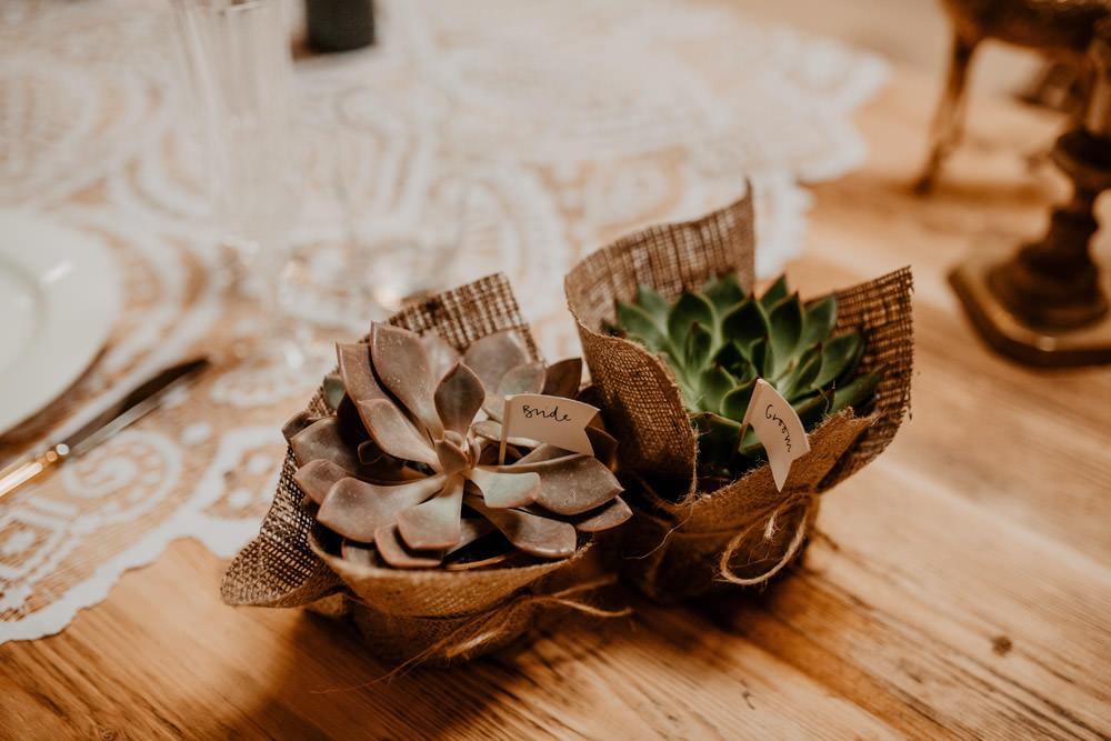 Succulent Favours Whimsical Boho Wedding Camilla Andrea Photography