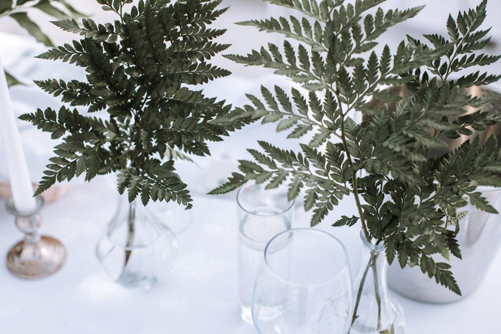 Ferns Bottle Vase Portugal Destination Wedding The Lovers Imagery